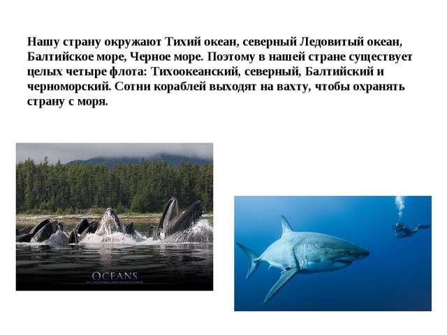Нашу страну окружают Тихий океан, северный Ледовитый океан, Балтийское море,...