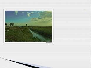 Туган авылым-Шунталы, Тирә-ягың гел таллык. Синдәге ямь, туган як, Җырга куш