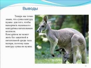 Выводы Теперь мы точно знаем, что сумка кенгуру нужна для того, чтобы выкорм