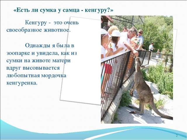 4359d8f734cc «Есть ли сумка у самца - кенгуру?» Кенгуру - это очень своеобразное животное