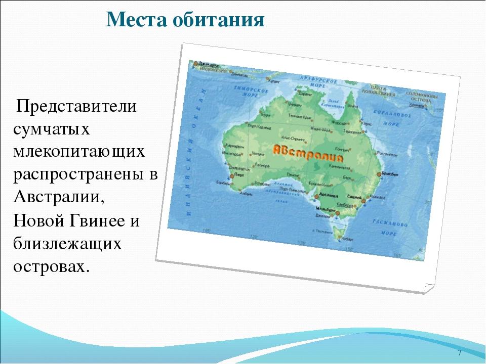 Места обитания Представители сумчатых млекопитающих распространены в Австрали...