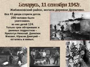 Жабинковский район, могила деревни Дремлево. Все 43 двора сгорели дотла. 286