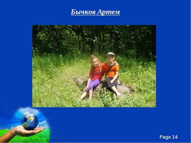Бычков Артем Free Powerpoint Templates Page *