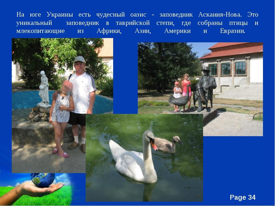 На юге Украины есть чудесный оазис - заповедник Аскания-Нова. Это уникальный...