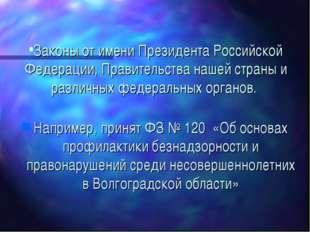 Законы от имени Президента Российской Федерации, Правительства нашей страны и
