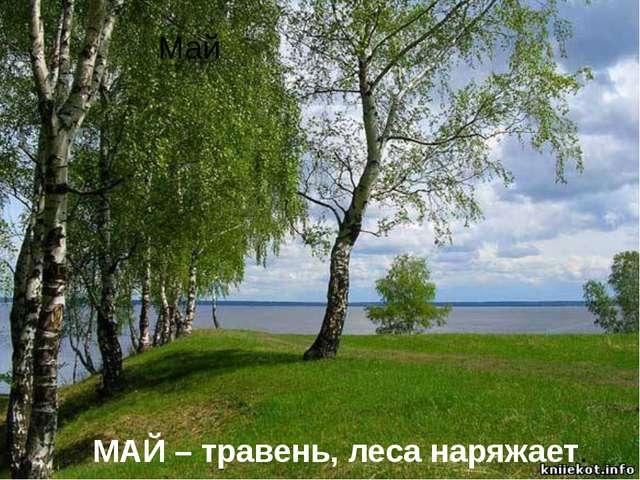 Май МАЙ – травень, леса наряжает.