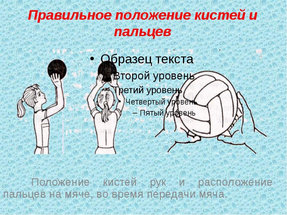 Правильное положение кистей и пальцев Положение кистей рук и расположение п...