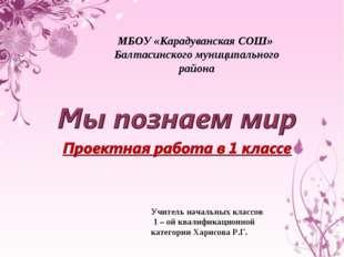 МБОУ «Карадуванская СОШ» Балтасинского муниципального района Учитель начальны