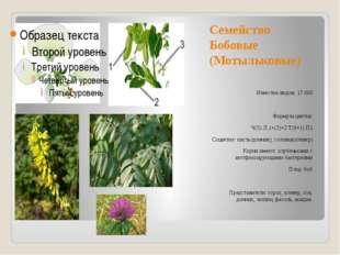 Семейство Бобовые (Мотыльковые) Известно видов: 17 000 Формула цветка: Ч(5) Л