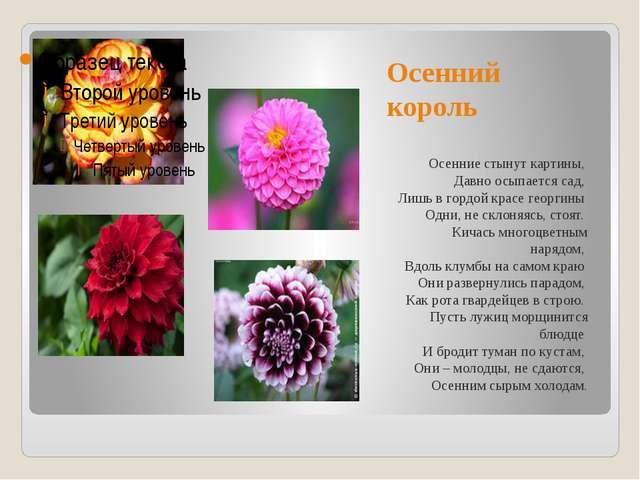 Осенний король Осенние стынут картины, Давно осыпается сад, Лишь в гордой к...