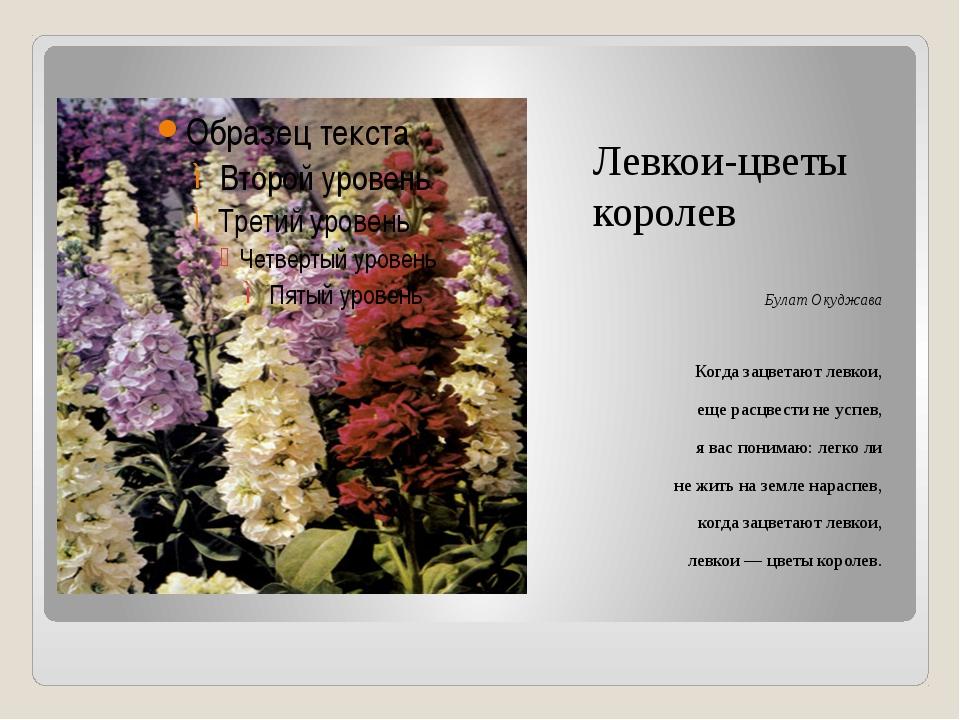 Левкои-цветы королев Булат Окуджава Когда зацветают левкои, еще расцвести не...