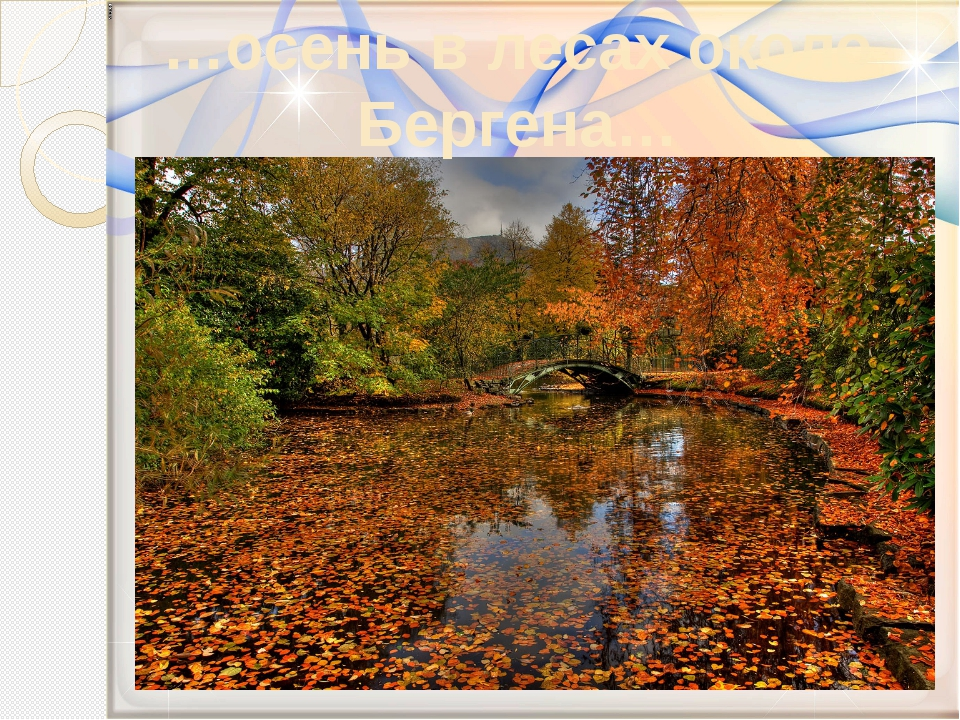 …осень в лесах около Бергена…