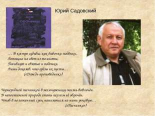 Юрий Садовский … В костре судьбы, как бабочки-подёнки, Летящие на свет из те
