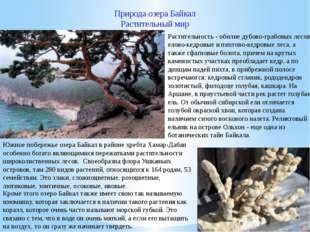 Природа озера Байкал Растительный мир Кроме этого озеро Байкал также имеет св