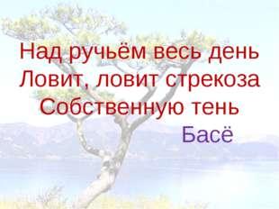 Над ручьём весь день Ловит, ловит стрекоза Собственную тень Басё