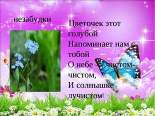 незабудки Цветочек этот голубой Напоминает нам с тобой О небе — чистом-чис