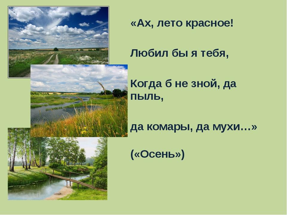 «Ах, лето красное! Любил бы я тебя, Когда б не зной, да пыль, да комары, да м...