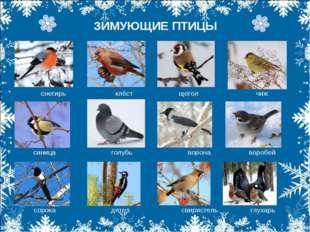 ЗИМУЮЩИЕ ПТИЦЫ снегирь клёст щегол чиж снегирь клёст щегол чиж синица голубь