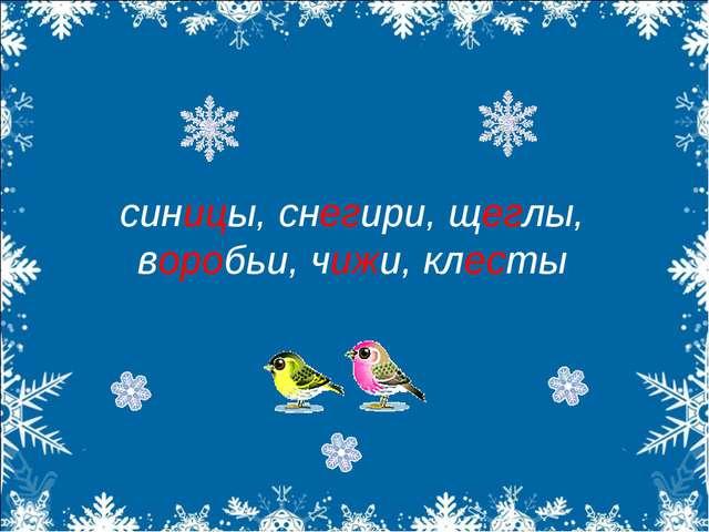 синицы, снегири, щеглы, воробьи, чижи, клесты
