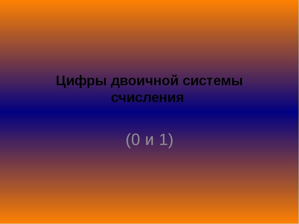 Цифры двоичной системы счисления (0 и 1)