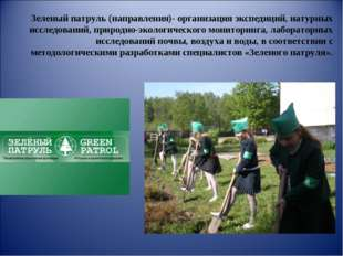 Зеленый патруль (направления)- организация экспедиций, натурных исследований,