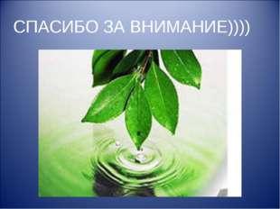 СПАСИБО ЗА ВНИМАНИЕ))))