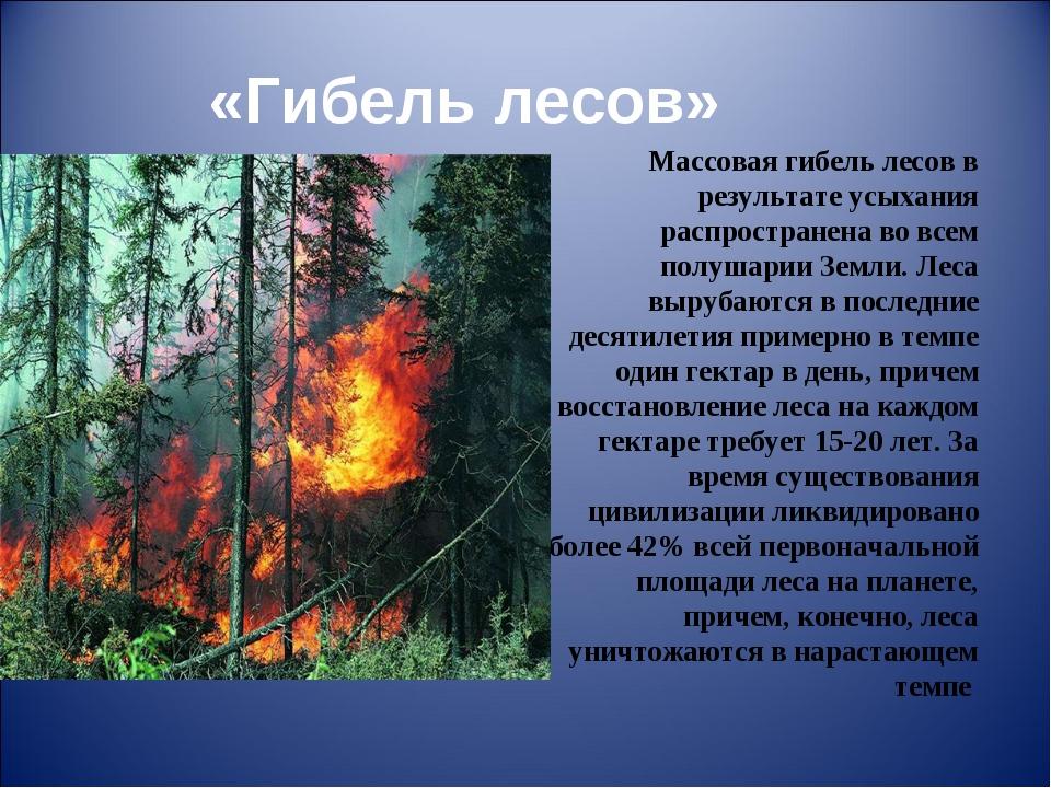 «Гибель лесов» Массовая гибель лесов в результате усыхания распространена во...