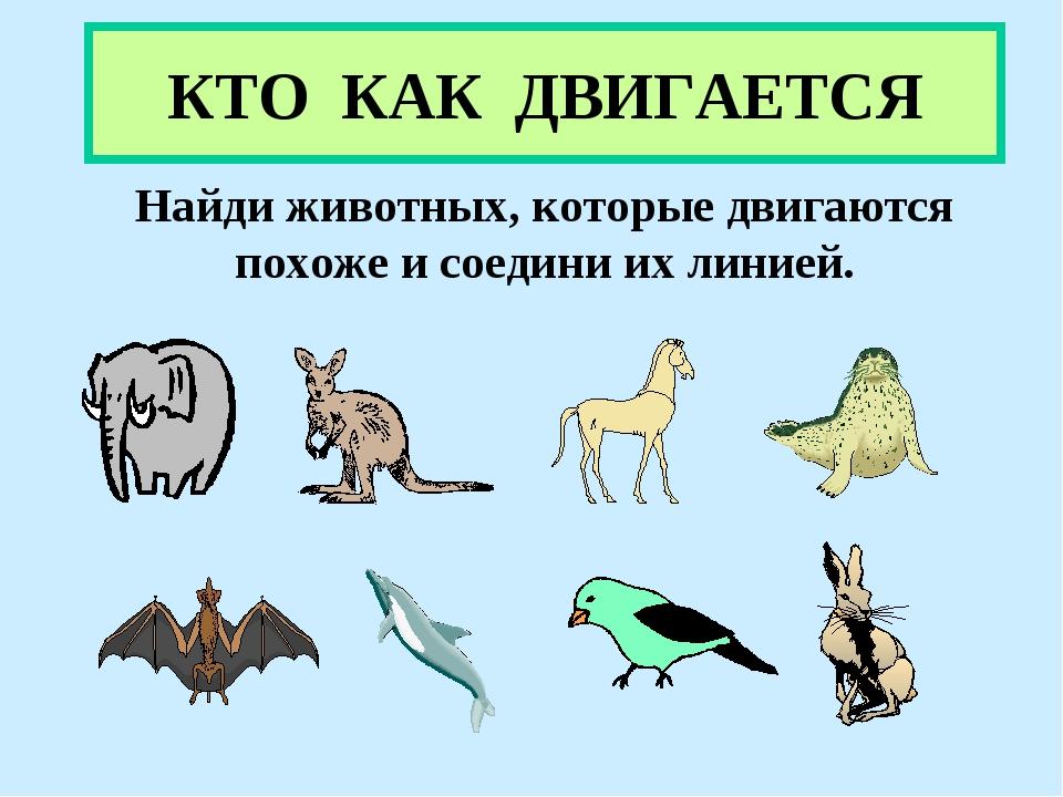 КТО КАК ДВИГАЕТСЯ Найди животных, которые двигаются похоже и соедини их линией.