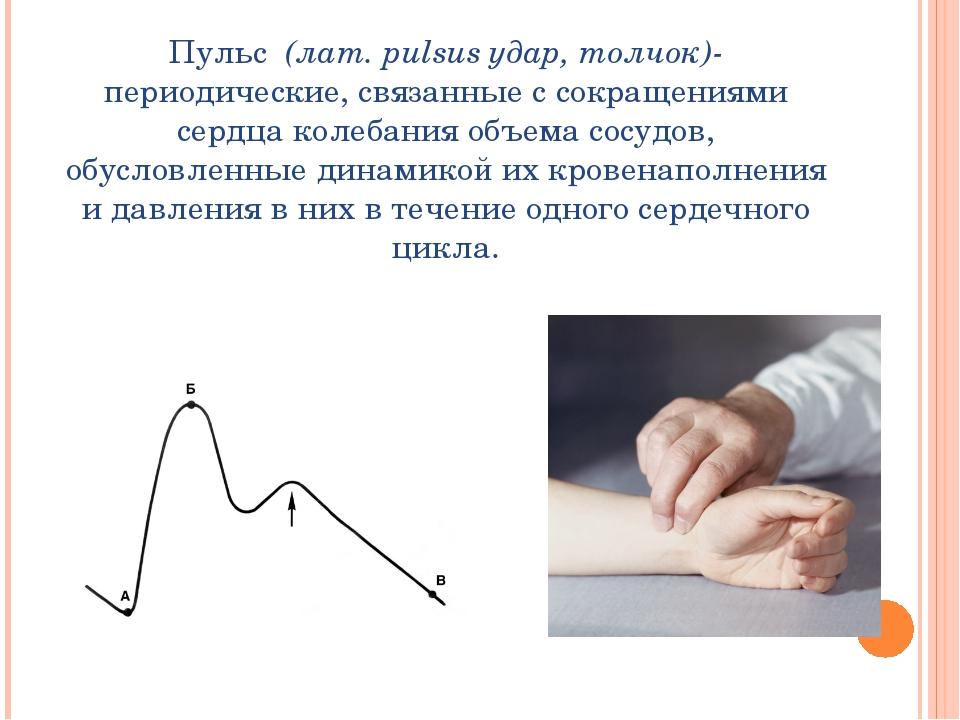 Пульс (лат. pulsus удар, толчок)- периодические, связанные с сокращениями сер...