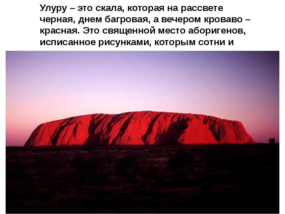 Улуру – это скала, которая на рассвете черная, днем багровая, а вечером крова...