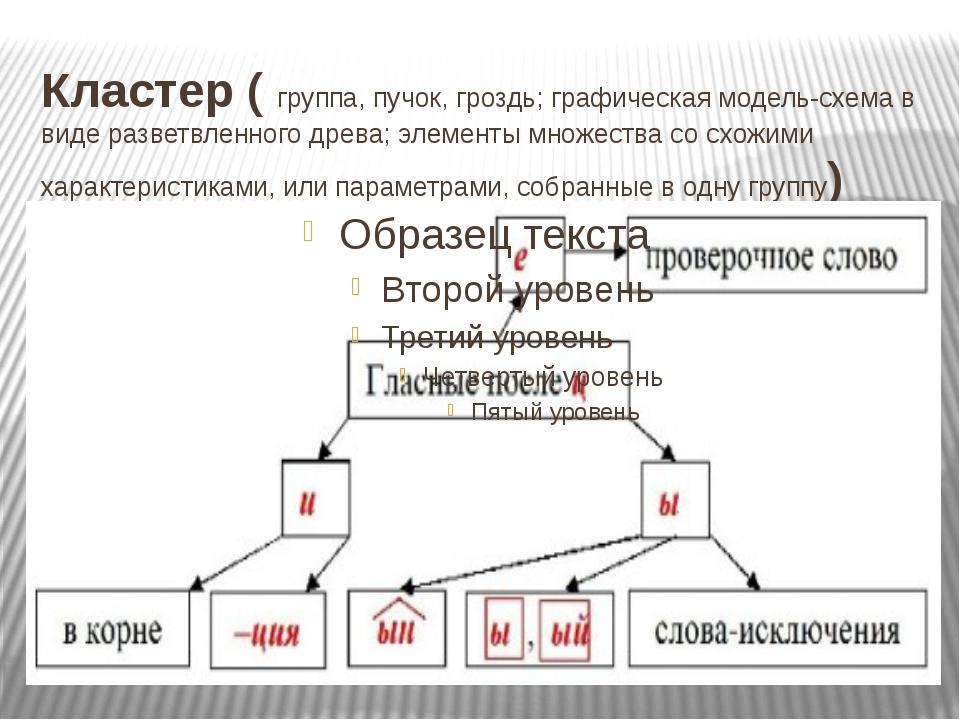 Кластер (группа, пучок, гроздь; графическая модель-схема в виде разветвленно...