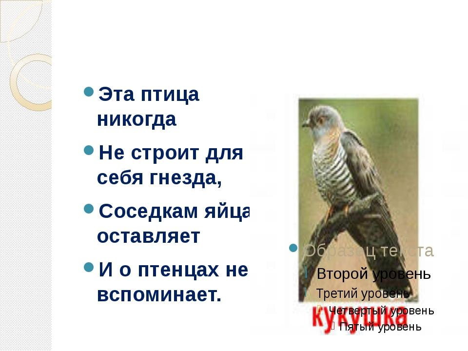 Эта птица никогда Не строит для себя гнезда, Соседкам яйца оставляет И о пте...