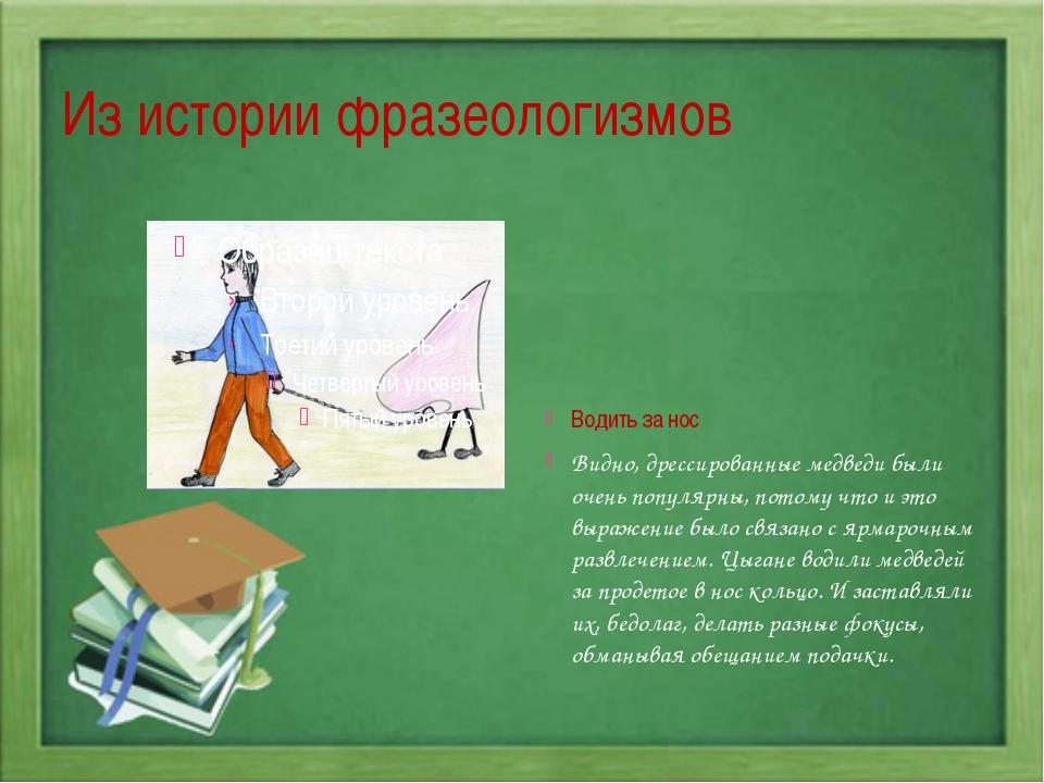 Из истории фразеологизмов Водить за нос Видно, дрессированные медведи были оч...