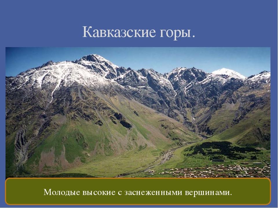 Кавказские горы. Молодые высокие с заснеженными вершинами.