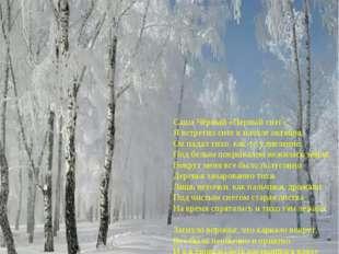 Саша Чёрный «Первый снег». Я встретил снег в начале октября, Он падал тихо,
