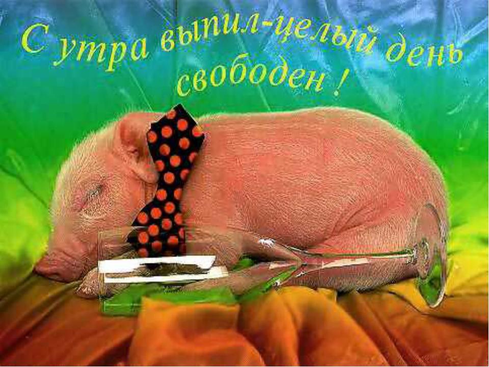 Картинка доброе утро свинья