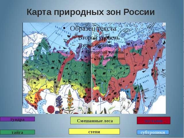 Карта природных зон России тундра тайга степи пустыни субтропики Смешанные леса