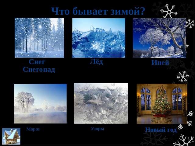 Животные зимой Волк Летом ходит волк сытый. Дичи много. Придёт зимнее время,...