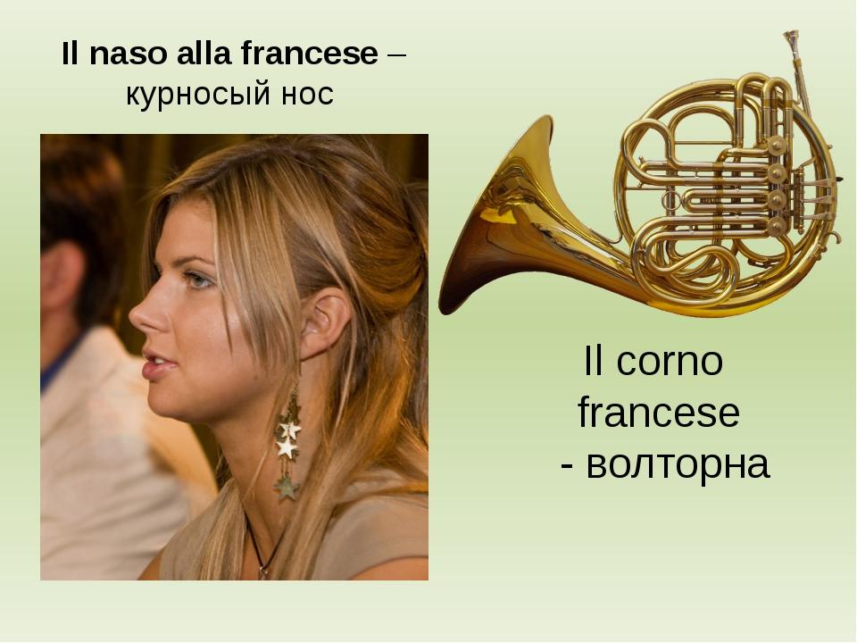 Il corno francese - волторна Il naso alla francese – курносый нос