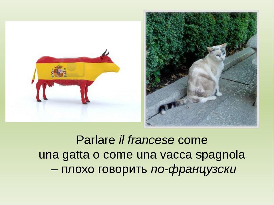 Parlare il francese come una gatta o come una vacca spagnola – плохо говорить...