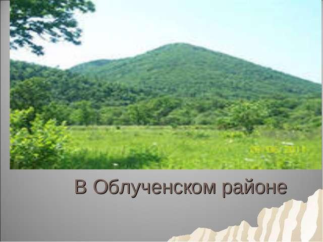 В Облученском районе