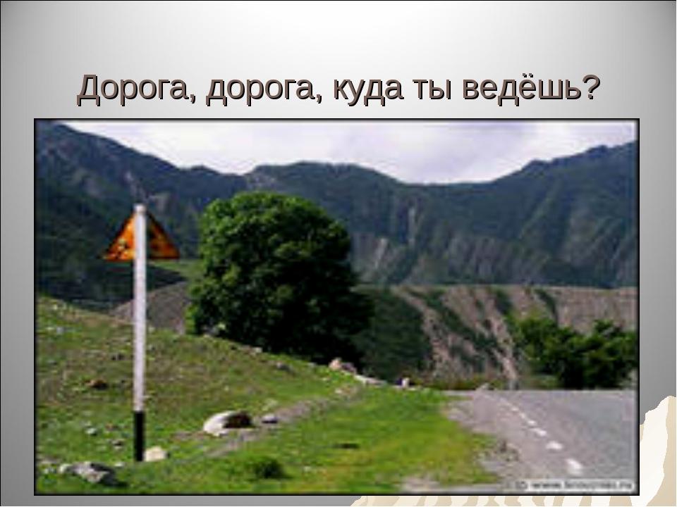Дорога, дорога, куда ты ведёшь?