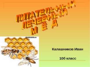 Калашников Иван 10б класс