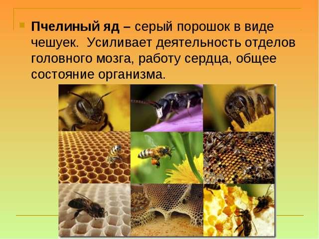 Пчелиный яд – серый порошок в виде чешуек.Усиливает деятельность отделов го...