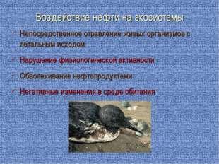 Непосредственное отравление живых организмов с летальным исходом Нарушение фи