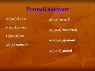 Устный диктант гр(и,е) бник в (а,о) дичка хр(а,о)брец д(о,а) ждевой в(и,е) се