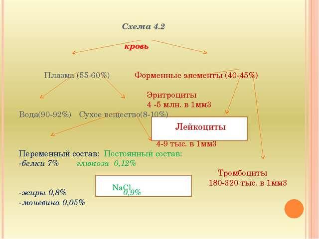 ЖЖ ЖЖ Схема 4.2  кровь   Плазма (55-60%) Форменные элементы (40-45%)  Эри...