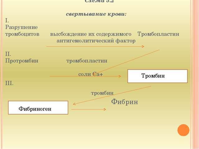 Схема 5.2  свертывание крови: I. Разрушение тромбоцитов высбождение их соде...