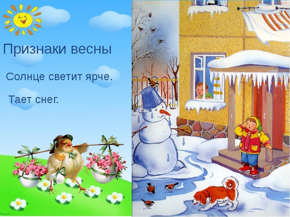 Признаки весны Тает снег. Солнце светит ярче.