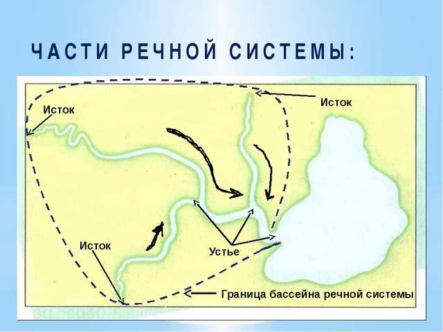 ЧАСТИ РЕЧНОЙ СИСТЕМЫ: Исток Устье Исток Исток Граница бассейна речной системы